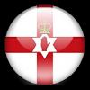 Кубок Северной Ирландии